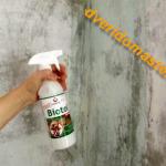 Грибок на стенах, что делать?